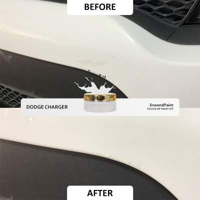 Before After Photo For Dodge Charger